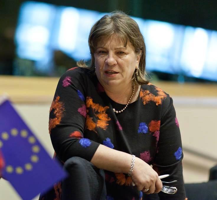 """""""norica nicolai parlament european"""""""